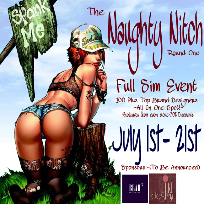 The Naughty Nitch Fashion Fair - Logo